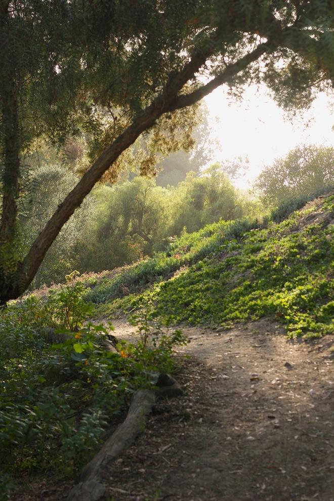 Balboa Park, San Diego // My SoCal'd Life, a lifestyle blog