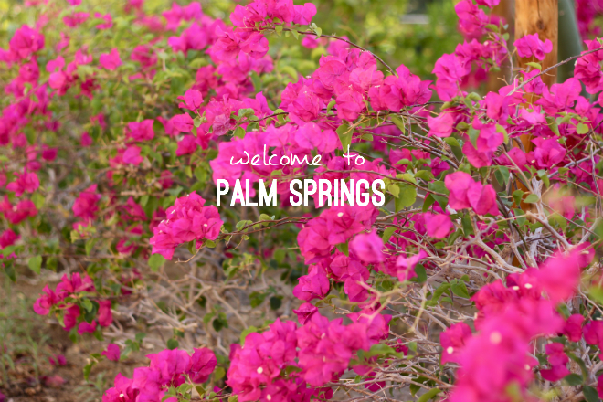 Palm Springs travel guide // My SoCal'd Life, a lifestyle blog