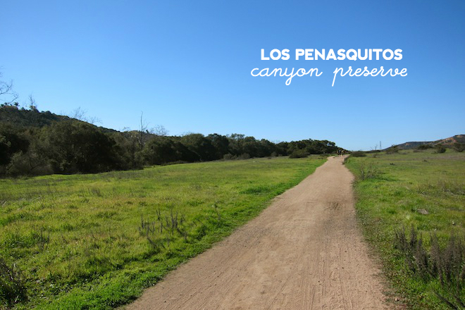 los penasquitos canyon preserve // hiking in san diego via My SoCal'd Life