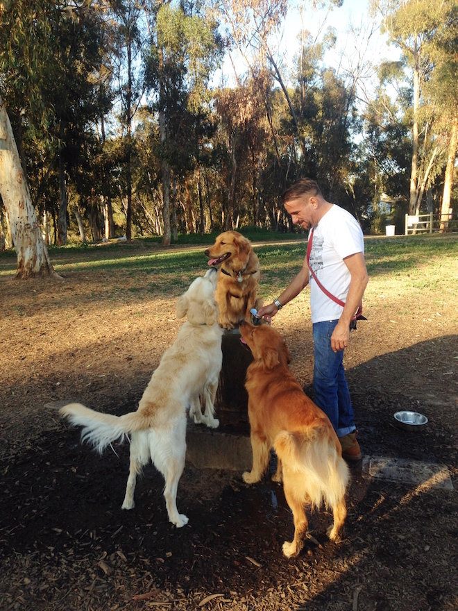 goldens // My SoCal'd Life, a lifestyle blog