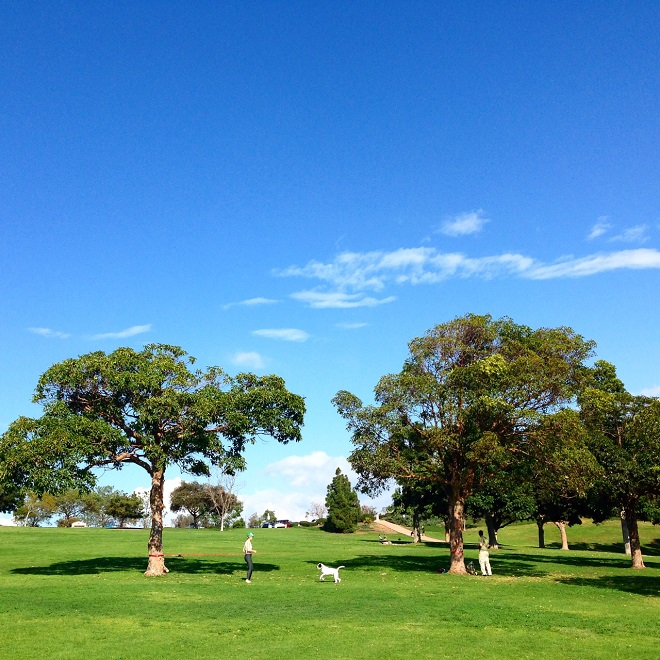 Kate Sessions Park, San Diego via My SoCal'd Life