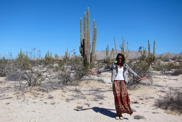 Valley of the Giants, San Felipe, Mexico via My SoCal'd Life, a lifestyle blog
