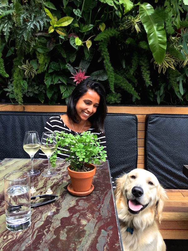 Patio on Goldfinch — dog-friendly restaurants in San Diego // My SoCal'd Life